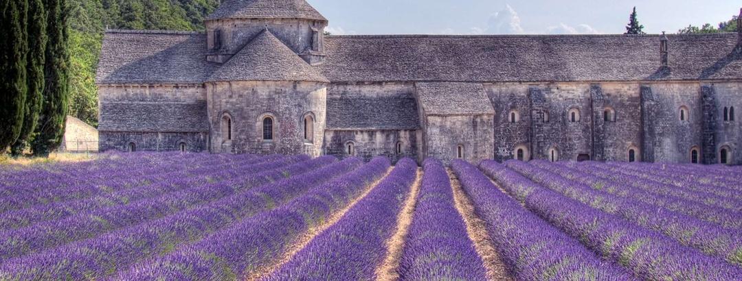 L'abbaye cistercienne de Sénanque et ses champs de lavande dans le Vaucluse