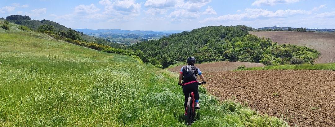 Sur les coteaux proches de Castelnaudary