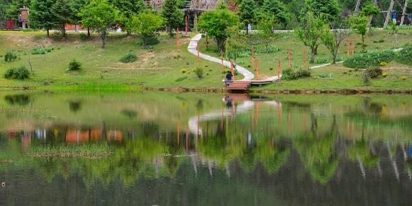 普达措国家公园内的风景