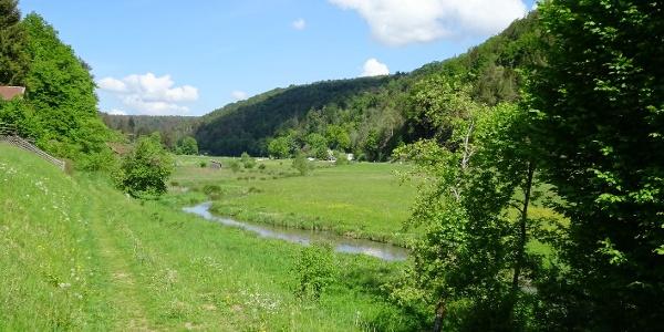 Im wunderschönen Tal der Wissinger Laber