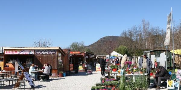 Tóti piac (Liliomkert), háttérben a Csobánc tömbje