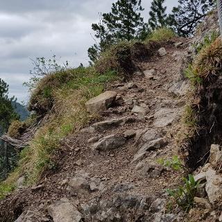 Der Weg Nr. 263 vom Gasthof Mühle zur Notkarspitze enthält drahtseilgesicherte und etwas ausgesetzte Stellen!