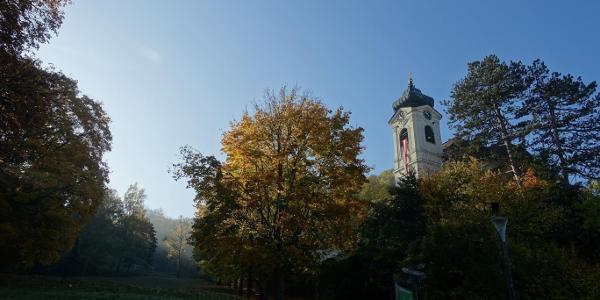 Kaltenleutgeben - Pfarrkirche