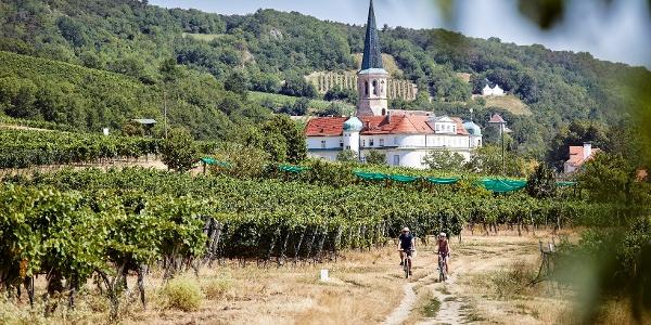 Weingartenradweg