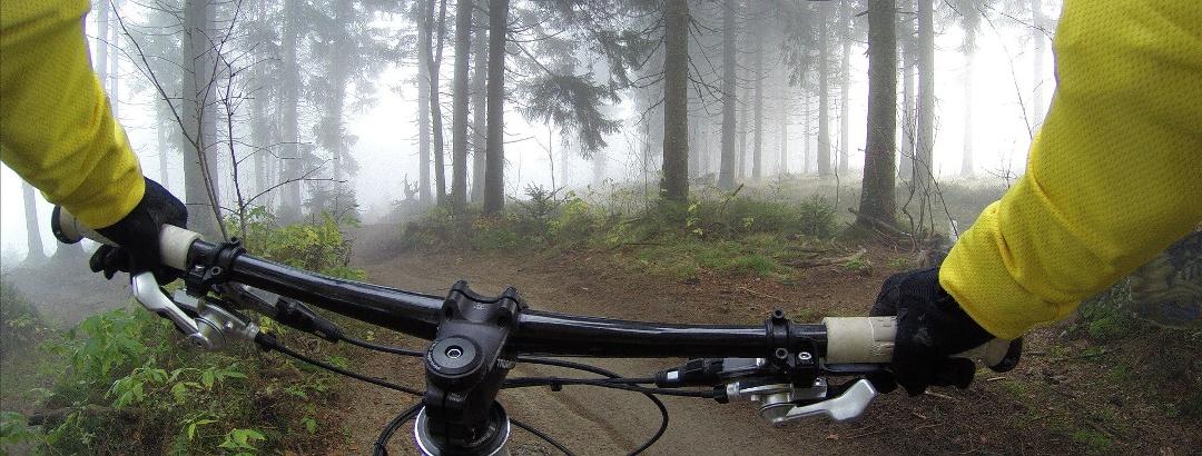 Sortie VTT en forêt en Moselle