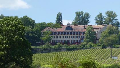 Weingut Schloss Westerhaus von Großwinternheim