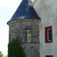 Rosen am Turm des Weingut Schloss Westerhaus