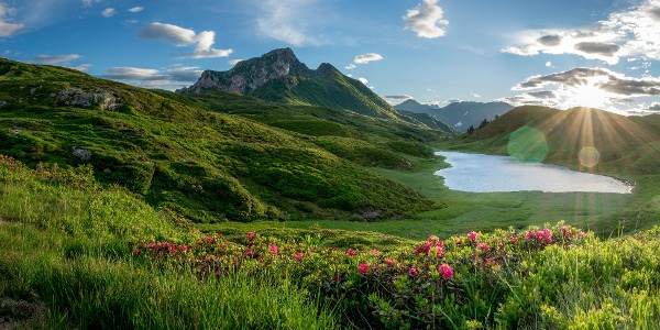 Zollner See