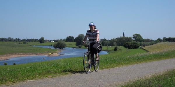 Radfahrer auf dem Deich am Altrhein