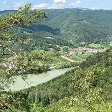 Der Blick runter auf die Donau eröffnet die Wahlmöglichkeit für die Route zurück nach - in meinem Fall Dürnstein. Ich bin am rechten Donauufer gefahren und habe mich von der Fähre von Rossatz nach Dürnstein übersetzen lassen.