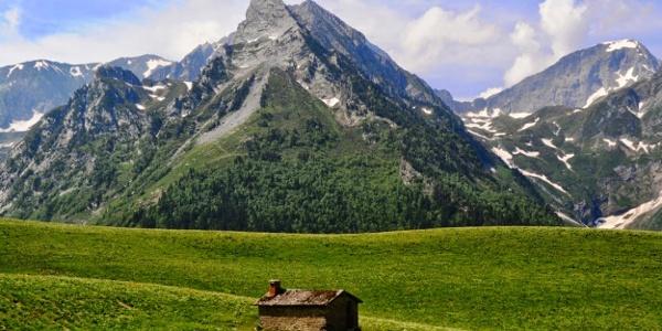 Cabana de Campasaure