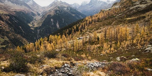 Wanderung Alpe Gues
