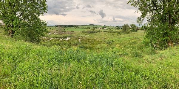 Landschaft bei Gut Eidt / St.Vith