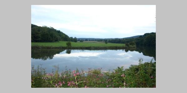 Blick vom Campingplatz Spiegelburg