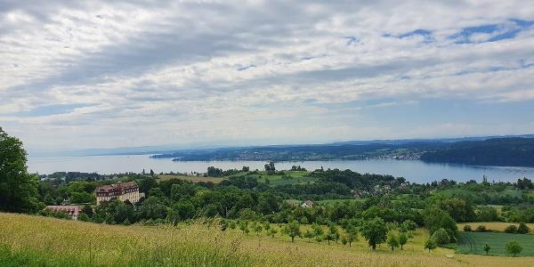 Blick etwas unterhalb des Torkelbühls auf das Schloss Spetzgart und den Bodensee