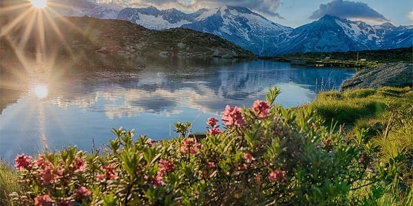 Lago Klaussee