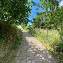 Steiles Stück hoch zur Kropsburg