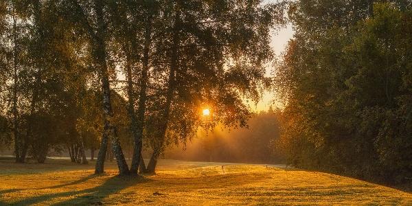 Golfplatz Freudenstadt im Gegenlicht