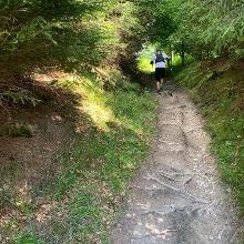 Allerfeinste Trails auf dem Briloner Kammweg