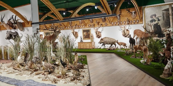Arche Noah Sammlung Natur