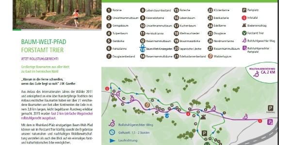 Flyer Baum-Welt-Pfad inkl. schematischer Wegeführung