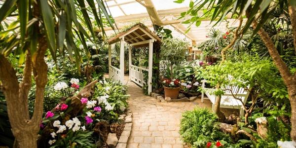 Garten der Schmetterlinge_