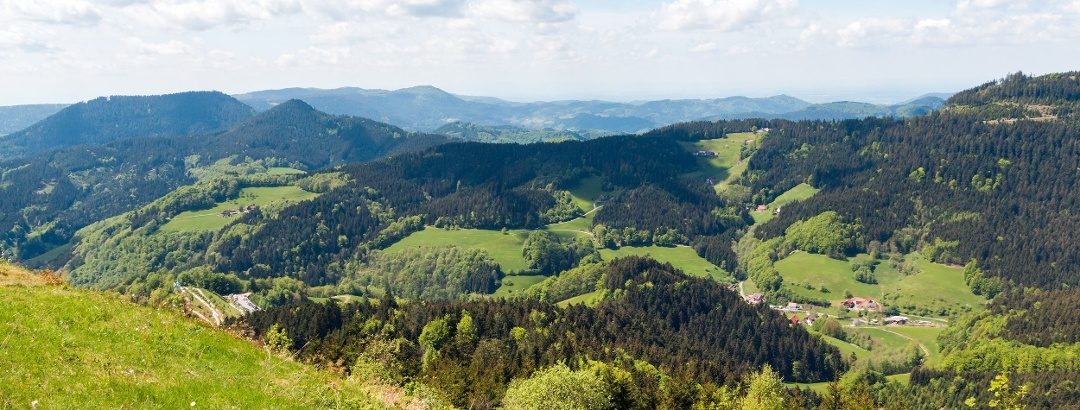 Bad-Peterstal-Griesbach in the National Park Region Black Forest