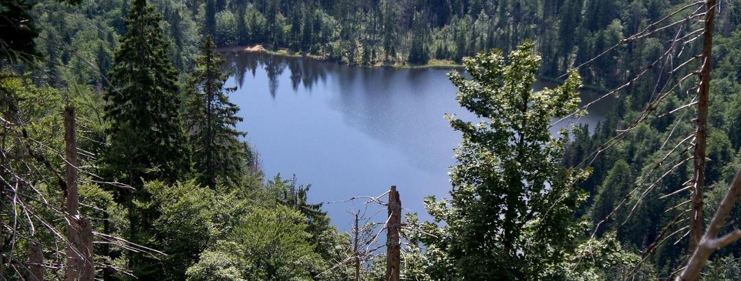 Lake Rachel