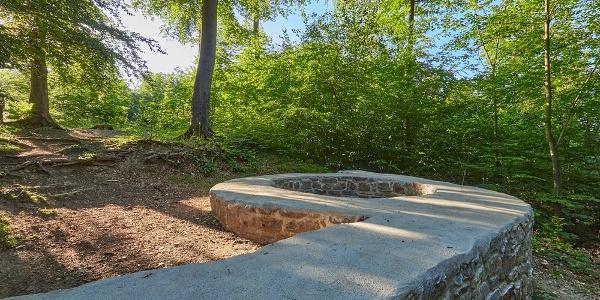Fundamente der Wittekindburg sind im Gelände sichtbar