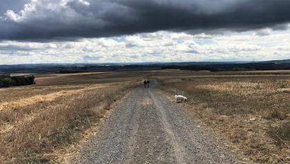 Dunkle Wolken über Felder