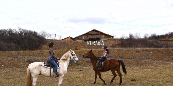 Zorabia