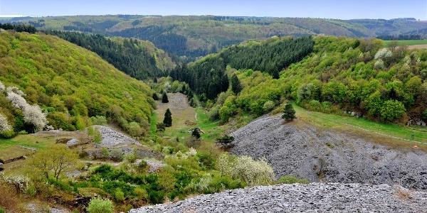 Aussichtspunkt ins Kaulenbachtal