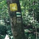 Alpannónia túraút jelölése a felső sárga