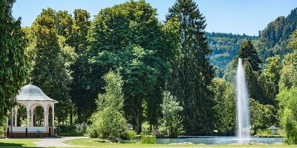 Die Tour verläuft im Wald oberhalb des Kurparks. Wer möchte, macht hier noch einen Abstecher