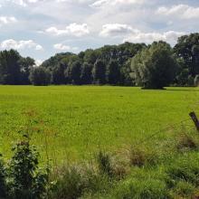 Landschaft bei Brakel