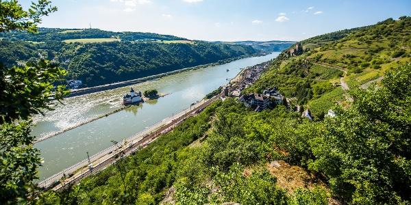 Blick auf Burg Pfalzgrafenstein
