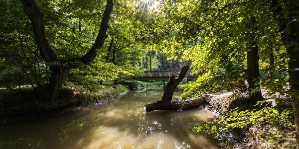 Híd a Gaja-patakon, az Ádám-Éva-fánál