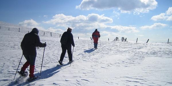 Schneeschuhwandern im oberen Bereich der Grebenzen