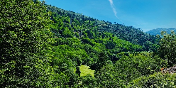 O Selvagem Início: Manteigas > Vale de Amoreira [GR33 - GRZ: Etapa 2]