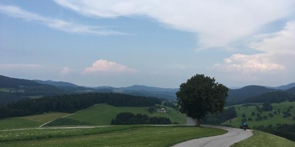 Triesting Gölsental Radweg