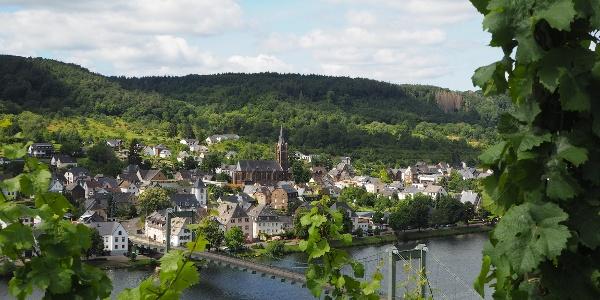 De stad Wehlen