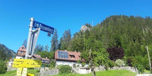 Am Poppenberg - das Ziel ist schon in Sicht, die Aussichtsplattform liegt auf dem Felsen