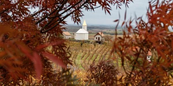 A Szent Ilona-kápolna a Somló oldalában