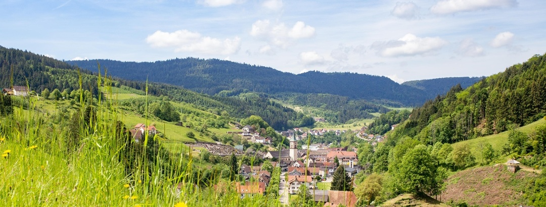 Ortsansicht Bad Peterstal-Griesbach