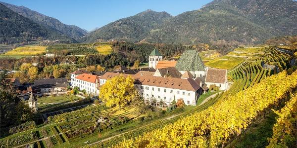 Wine path in Brixen