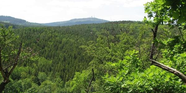 Blick vom Kammweg Schloß Tenneberg