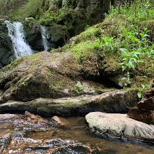 Rötenbach falls
