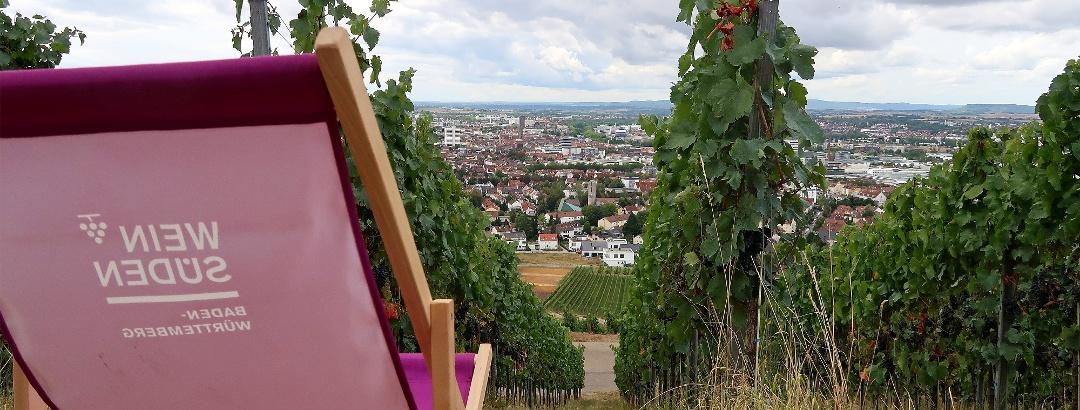 Aussicht vom Wartberg auf Heilbronn.
