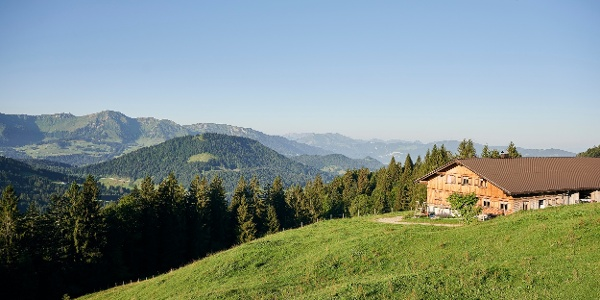 Alpe Schwarzenberger Platte im Lecknertal