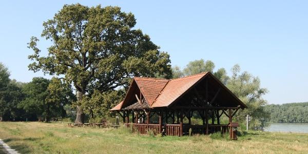 Gemenci Erdei Vasút (Gemenc-Dunapart állomás)